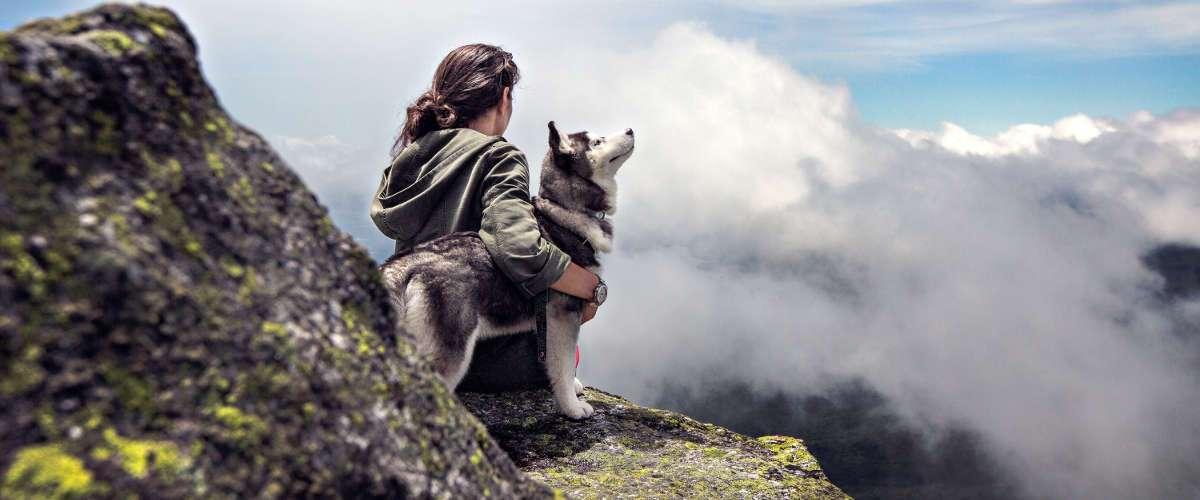 jak dbać o psa