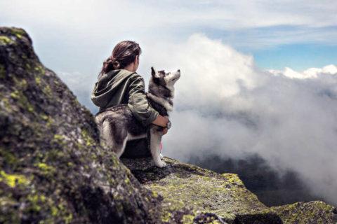 zadbać o psa