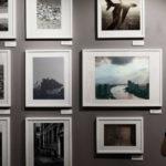 Darmowe zdjęcia a prawa autorskie